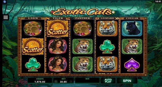 Exotic Cats (Microgaming) Slot