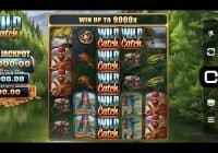 Wild Catch (Microgaming) Slot Review
